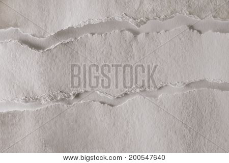 view of blank white ragged paper texture