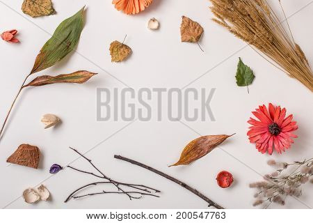 Creative Autumn Set With Dry Plants