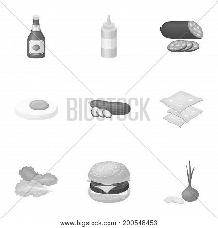 Rolls, cutlets, cheese, ketchup, salad, and other elements. Burgers and ingredients set collection icons in monochrome style vector symbol stock illustration .