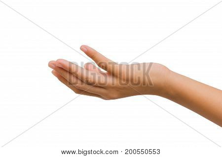 12 year old asian young girl open hand palm up isolated on white background. Clipping path. giving concept.