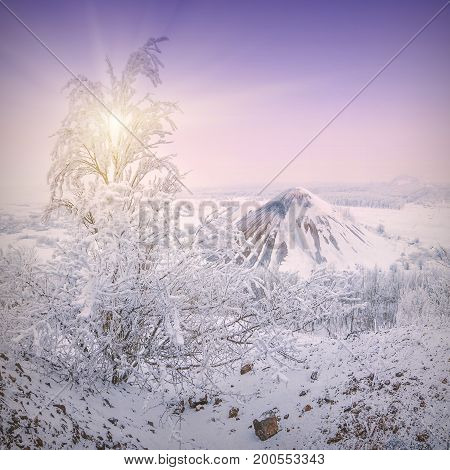 Cold Winter Morning_2