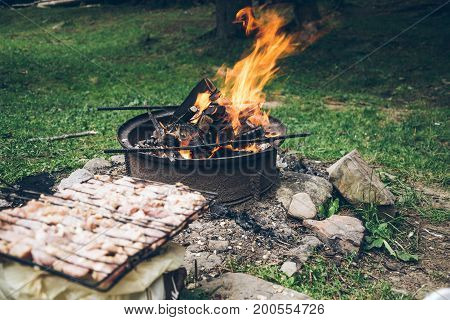 picnic, meat on bonfire in the forest