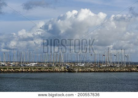 View of the masts of a marina in Denmark