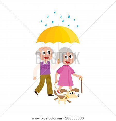 vector grey-haired man and woman walks in the rain happily keeping umbrella in hand with puppy dog pet. Flat cartoon isolated couple illustration on a white background