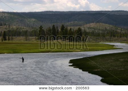 Flyfisherman In Yellowstone