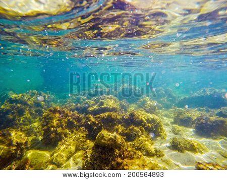 Rocky sea floor in Alghero. Sardinia Italy