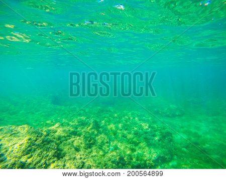 Rocks and sand in Alghero seabed. Sardinia Italy
