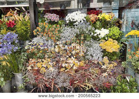 Flowers On Rambla Boulevard. It Always Sells Many Flowers Here