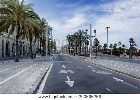 BARCELONA SPAIN - JULY 13 2013: Passeig de Colom in Barcelona