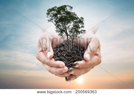 Human hands holding soil emerges from the sky in the background blurred. Create a new world. loves the world.Environment Day Ecology concept. Elements of this image furnished by NASA.