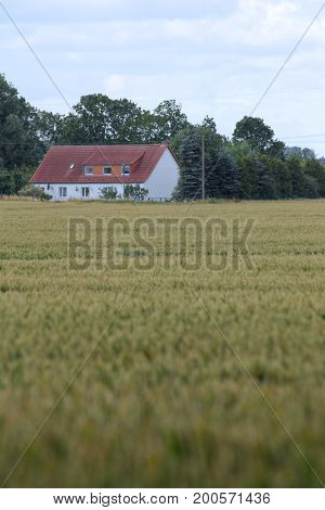 View Over Field To The Historic Farm Eichenhof (lit. Oak Farm) At Jager, Mecklenburg-vorpommern, Ger
