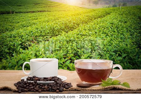 Coffee or tea in the morning on the wooden table and the Tea plantation background