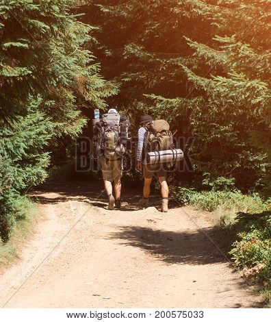 Two tourists walk along the forest mountain trail.