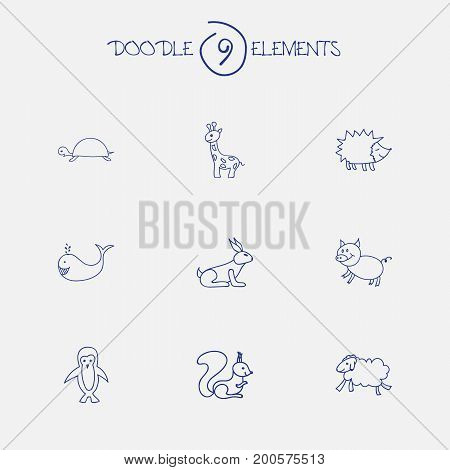 Set Of 9 Editable Zoology Doodles. Includes Symbols Such As Rabbit, Ewe, Swine And More