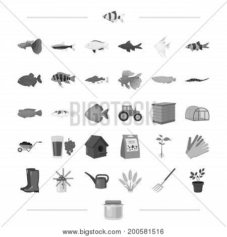 business, nature, agriculture, and other  icon in black style., honey, fauna, business icons in set collection.
