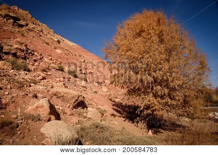 Scenic Landscape, Atlas Mountains, Morocco