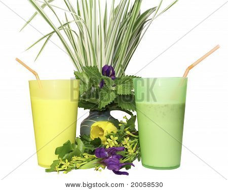 ?olour glasses with tubules for a cocktail on a white background with green leaves and a grass