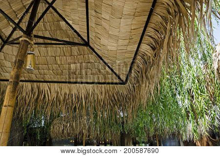 Cosy nook for summer relaxation with friend below palm sunshade close up in inside, park  Borisova gradina, Sofia,   Bulgaria