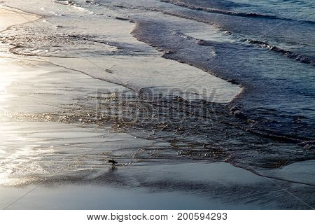 View of the shore of the ocean at low tide. Reflection of the sun in the ocean, surfers in the water. Spain.
