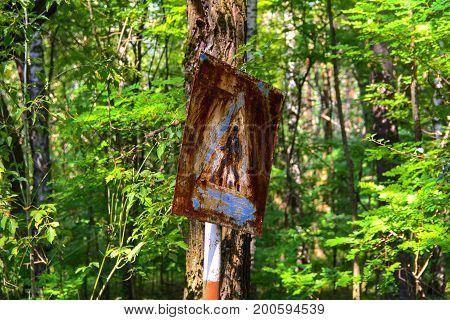 Old rusty signs of caution on the tree. Dead military unit. Consequences of the Chernobyl nuclear disaster August 2017.
