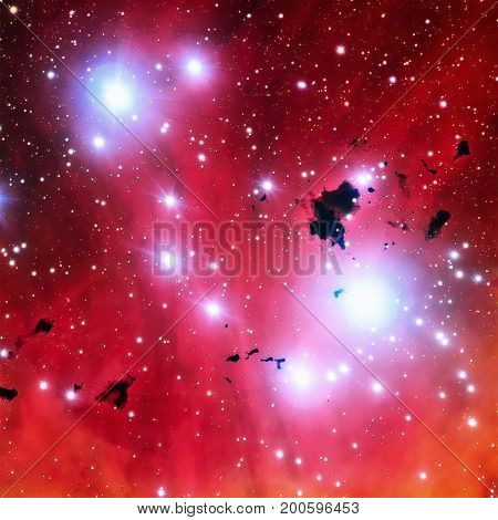 The Running Chicken Nebula Or The Lambda Centauri Nebula.