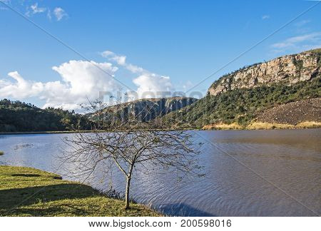 Leafless Tree And Lake Against Mountain And Valley Landscape
