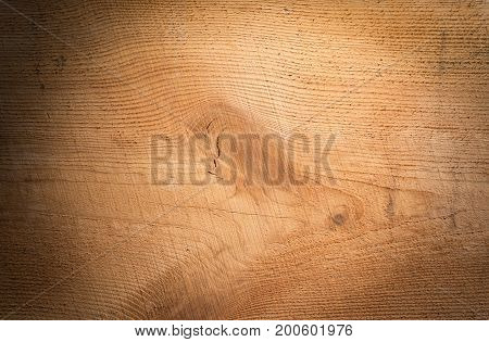 Pine board, flat style. close-up and isolated