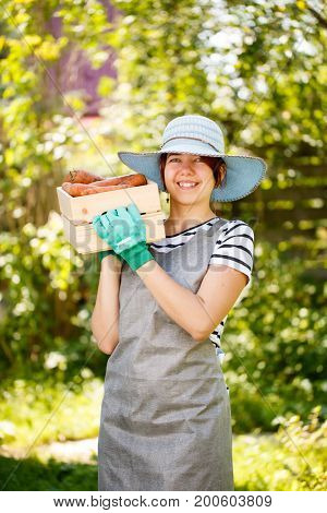 Farmer in gloves holding potatoes
