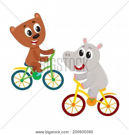 Cute little hippo and bear, kitten characters riding bicycles together, cartoon vector illustration isolated on white background. Baby hippo and bear, kitten animal characters riding bicycles, cycling