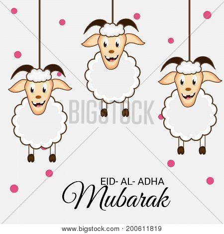 Eid Al Adha_20_aug_42