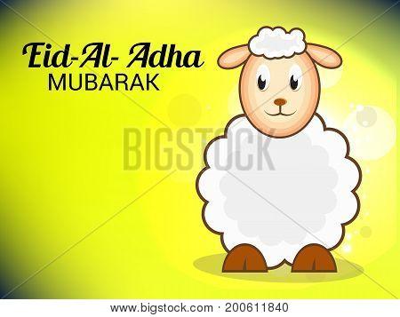 Eid Al Adha_20_aug_45