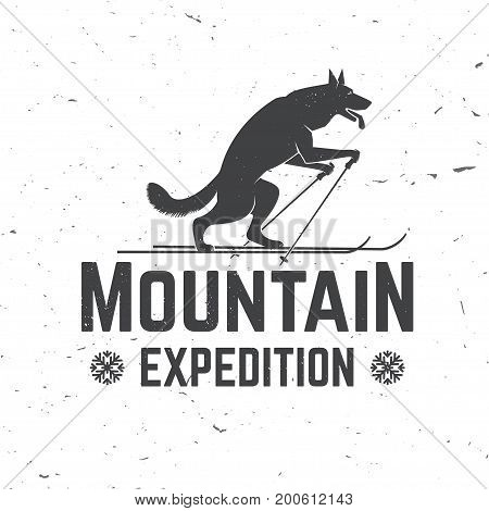 Mountain expedition badge. Vector illustration. Concept for shirt or logo, print, stamp or tee. Vintage typography design with wolf on the ski silhouette. Outdoors adventure emblem.