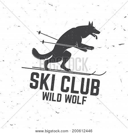 Ski club concept with wolf. Concept for shirt, print, seal or stamp. Ski club - wild wolf. Typography design- stock vector. Family vacation, activity or travel. For logo design, patches or badges.