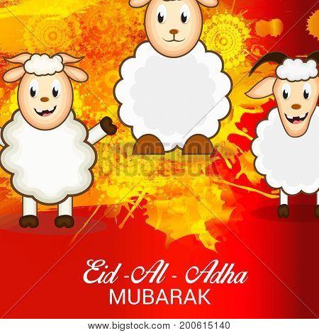 Eid Al Adha_20_aug_100