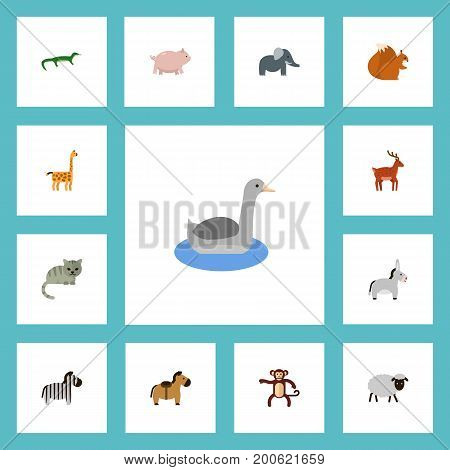 Flat Icons Swine, Camelopard, Chipmunk And Other Vector Elements