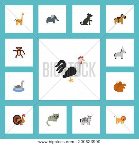Flat Icons Pony, Rooster, Gobbler And Other Vector Elements