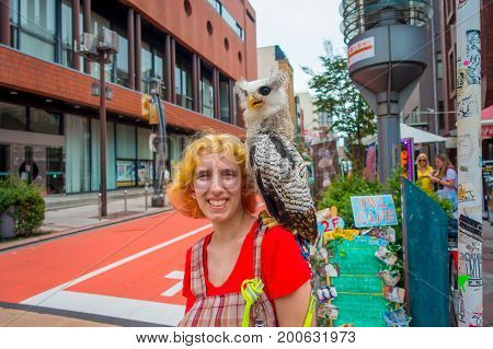 TOKYO, JAPAN JUNE 28 - 2017: Beautiful owl posing over a smiling woman shoulder in the street in Akihabara owl cafe - owls are very popular pets in Japan.