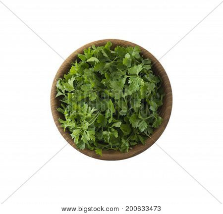 Parsley isolated on white background. Top view. Parsley with copy space for text.