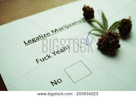 Marijuana Voting Ballot With Bud High Quality