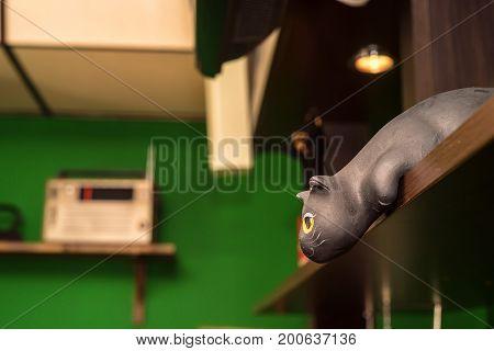 Close up cute figurine of black cat with big eyes on shelf