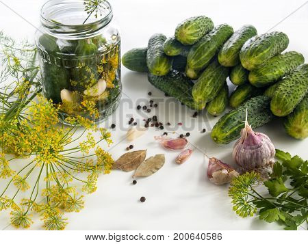 Cucumbers on the table are washed and ready for canning in a jar with spices garlic pepper bay leaves garlic dill parsley. Harvesting vegetables for the winter in banks