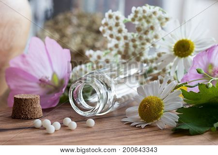 A bottle of homeopathic globules with chamomile yarrow and other flowers in the background