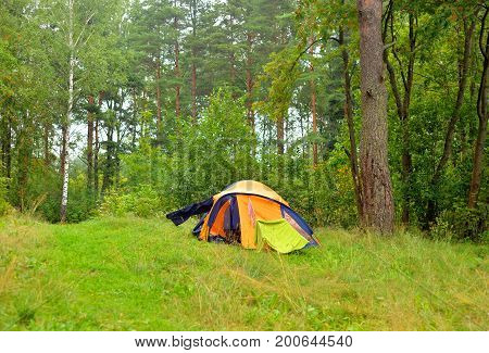 Camping tent in summer forest at Karelian Isthmus Russia.