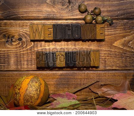 Welcome autumn sign on a wood background