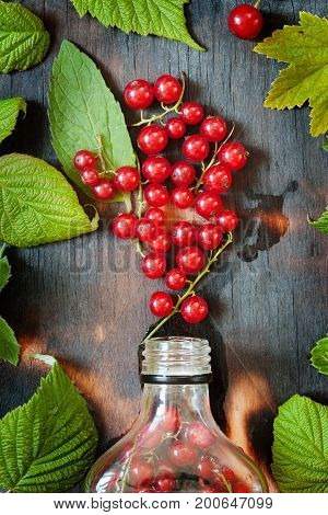 Berry Drink With Red Currant