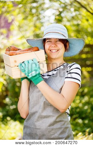 Photo of farmer in gloves holding potatoes in box in afternoon