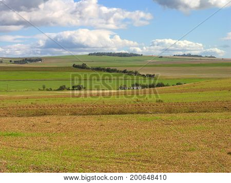 A LANDSCAPE, WITH RICH RED SOIL AND GREEN FIELDS IN THE FORE GROUND, AND DARK CLOUDS IN THE BACK GROUND