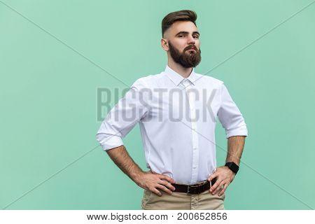 The arrogant bearded man. Businessman looking at camera. Indoor studio shot light green background