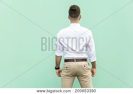 Back view of a young adult brunette businessman on light green background. Studio shot