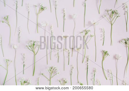 Floral pattern made of lily of the valley green leaves branches on pink background. Flat lay top view. Floral pattern. Pattern of flowers. Flowers pattern texture